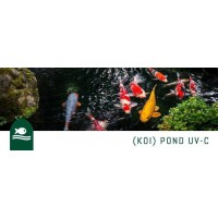 Koi Carp pond UV-C disinfection systems for private and professionals